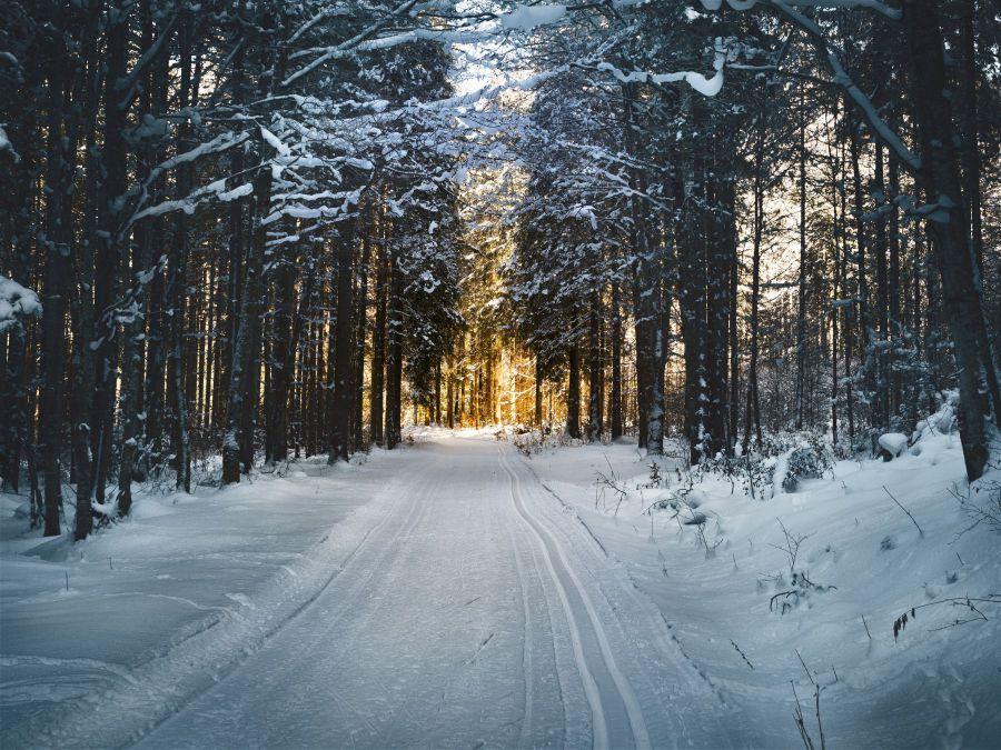 ***WINTER***Bekijk nu ook onze Volvo-winterwielen***WINTER***
